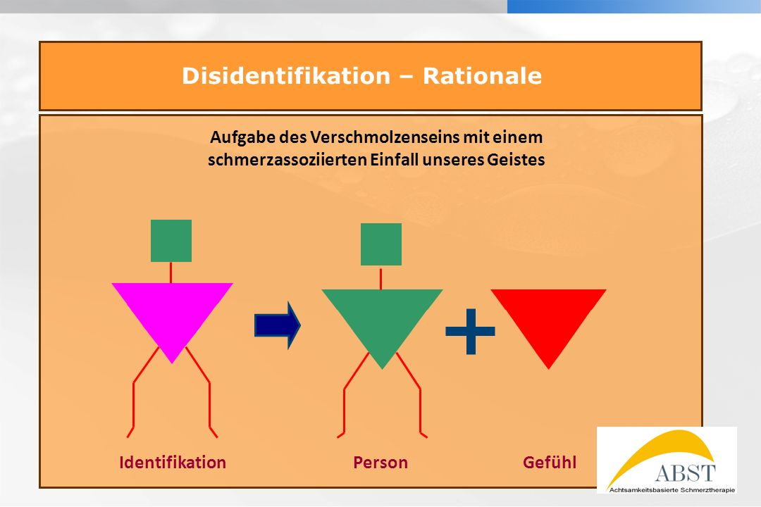 Disidentifikation – Rationale