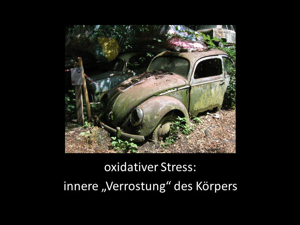 """oxidativer Stress: innere """"Verrostung des Körpers"""