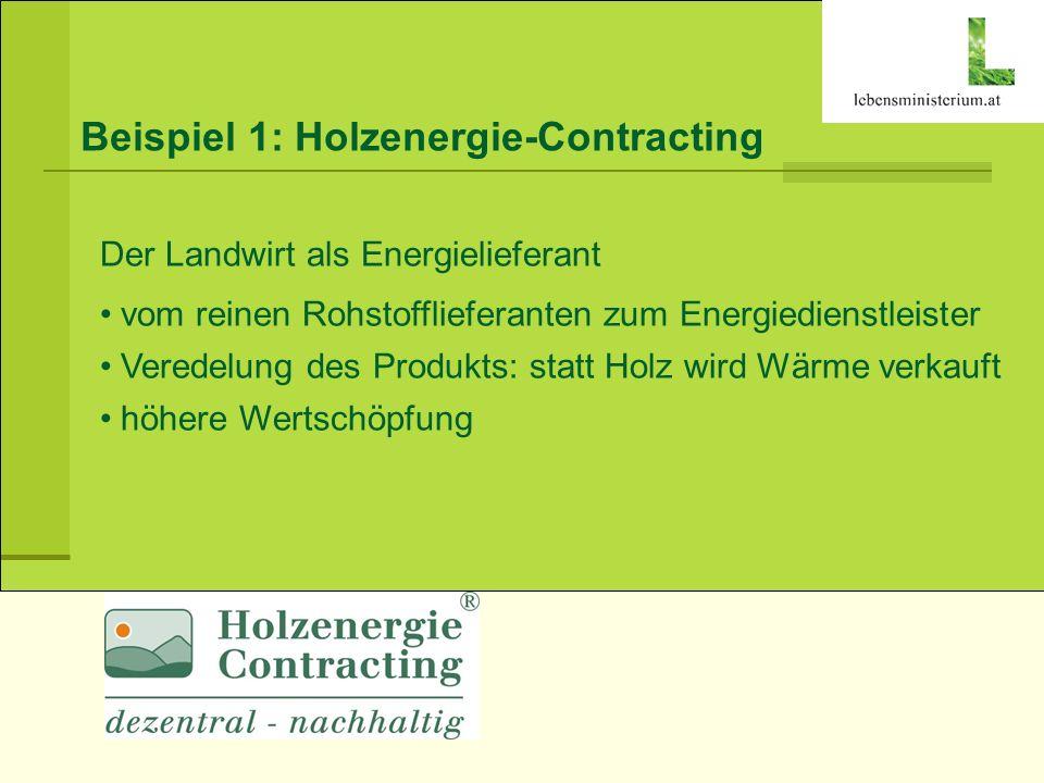Beispiel 1: Holzenergie-Contracting