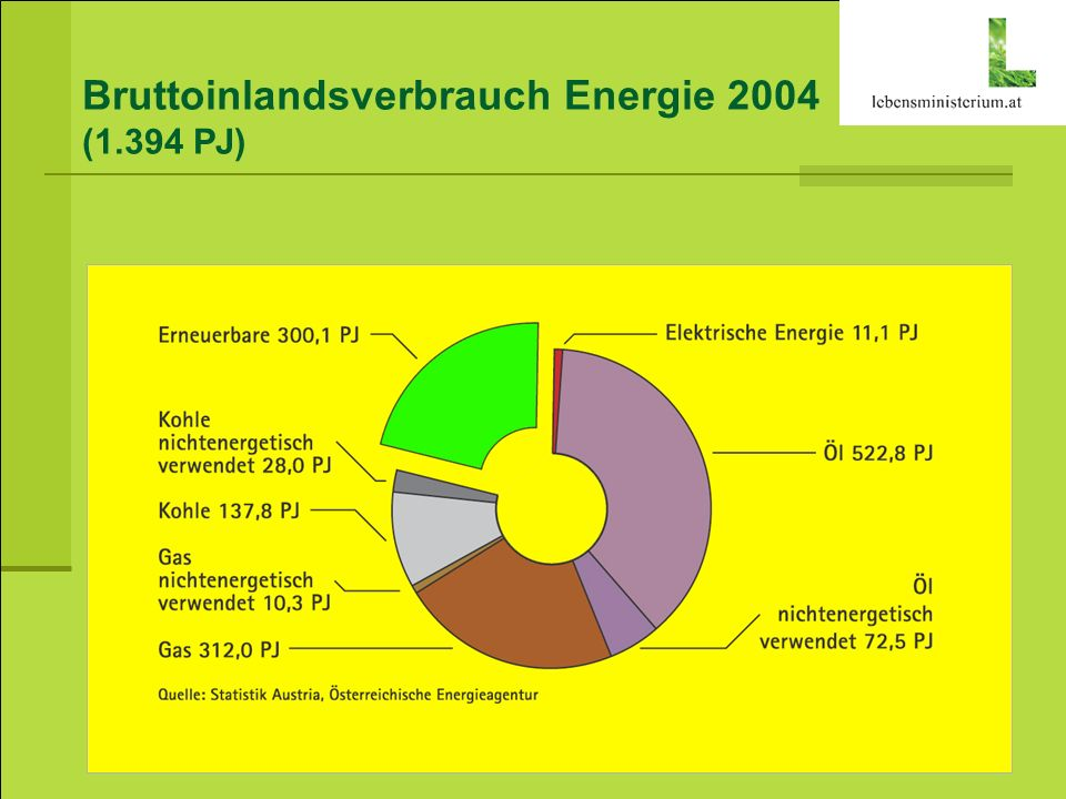 Bruttoinlandsverbrauch Energie 2004