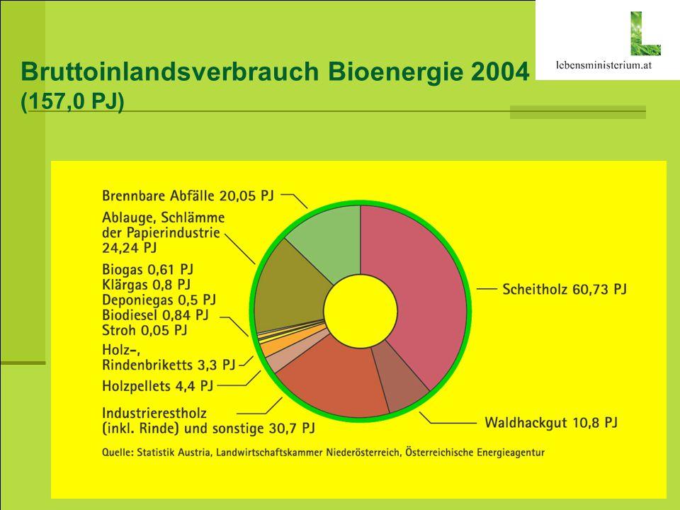 Bruttoinlandsverbrauch Bioenergie 2004
