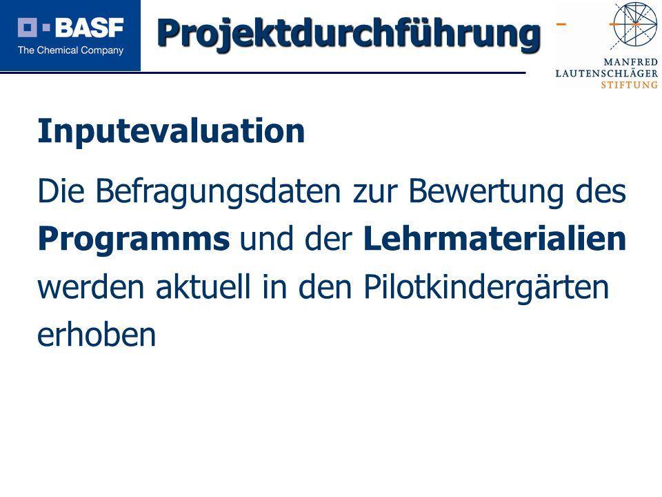 Projektdurchführung Inputevaluation