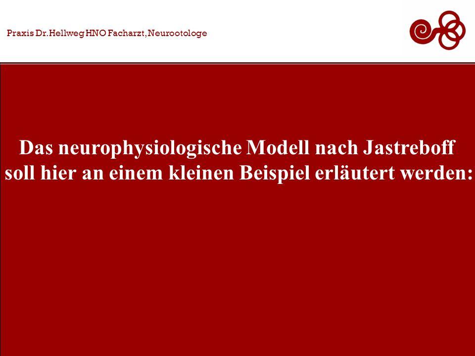 Das neurophysiologische Modell nach Jastreboff