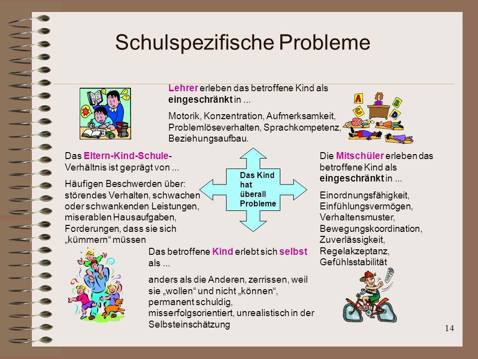 Schulspezifische Probleme