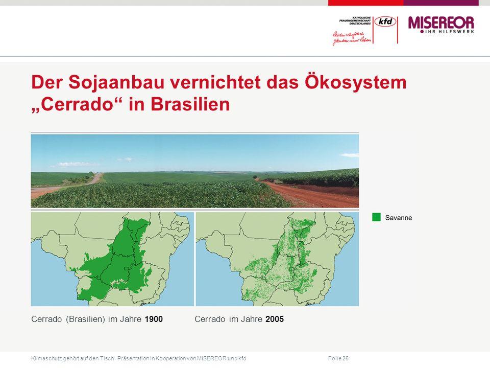 """Der Sojaanbau vernichtet das Ökosystem """"Cerrado in Brasilien"""