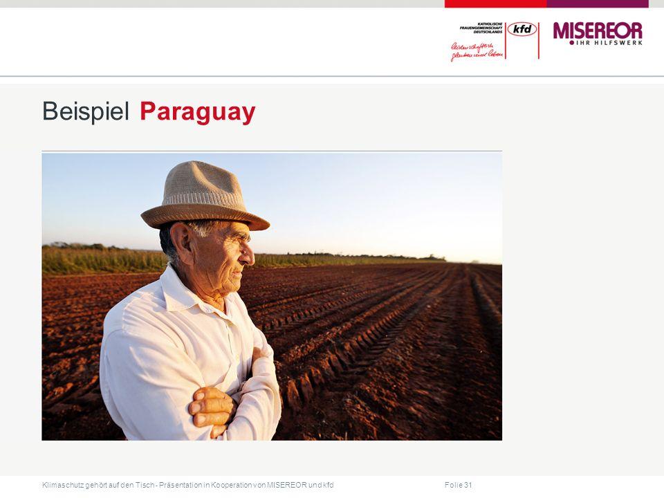 Beispiel Paraguay Jahr für Jahr werden mehr als 24 Millionen Liter giftige Agrarchemikalien auf den Feldern der riesigen Mono-kulturen versprüht.