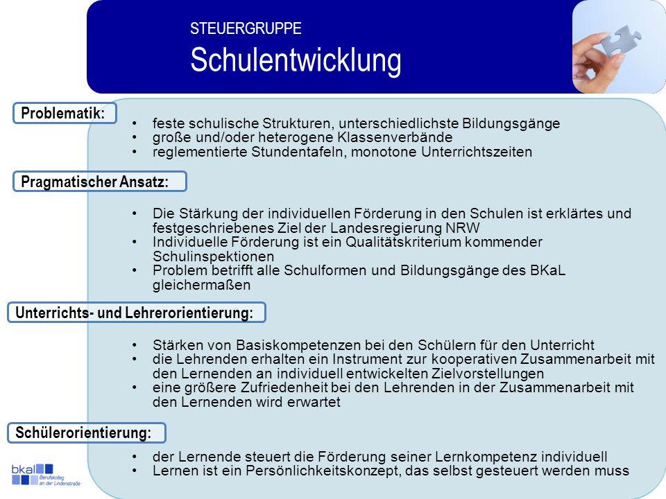 Schulentwicklung STEUERGRUPPE Problematik: Pragmatischer Ansatz: