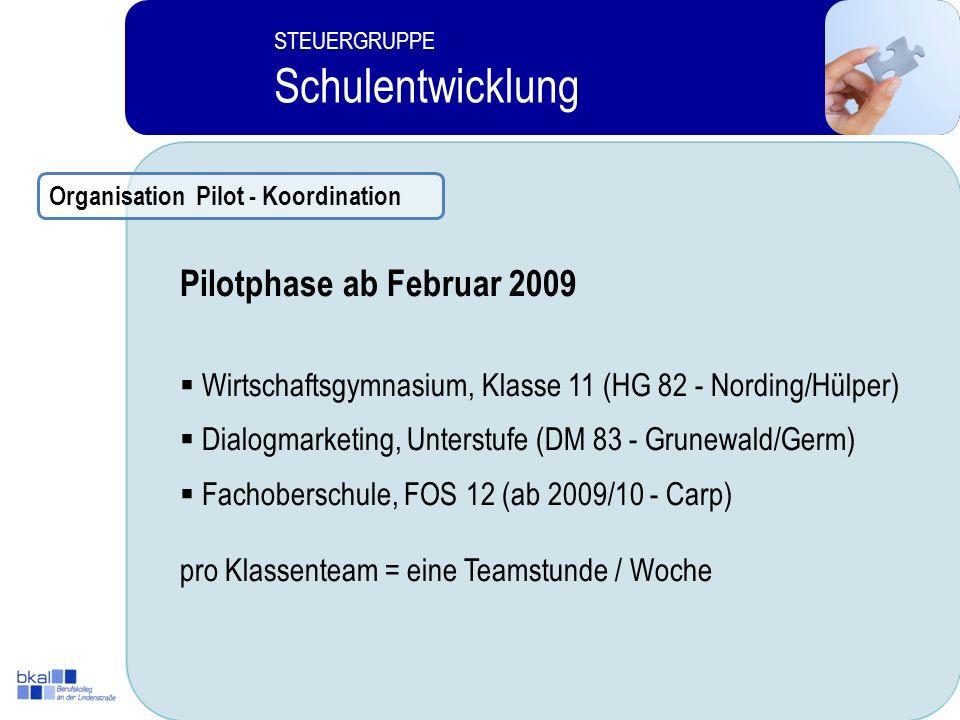 Schulentwicklung Pilotphase ab Februar 2009