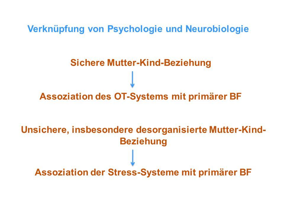 Verknüpfung von Psychologie und Neurobiologie
