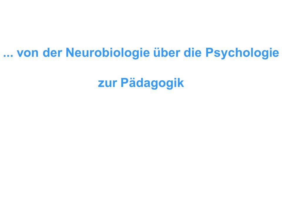 ... von der Neurobiologie über die Psychologie