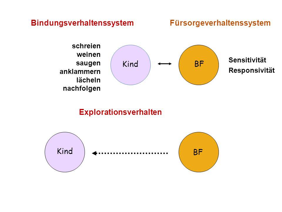 Bindungsverhaltenssystem Fürsorgeverhaltenssystem