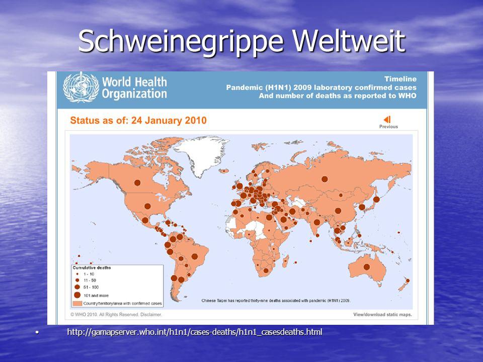 Schweinegrippe Weltweit