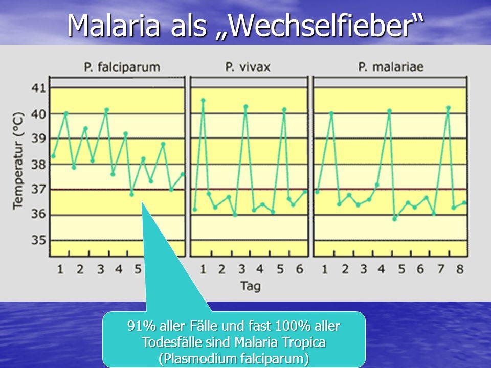 """Malaria als """"Wechselfieber"""