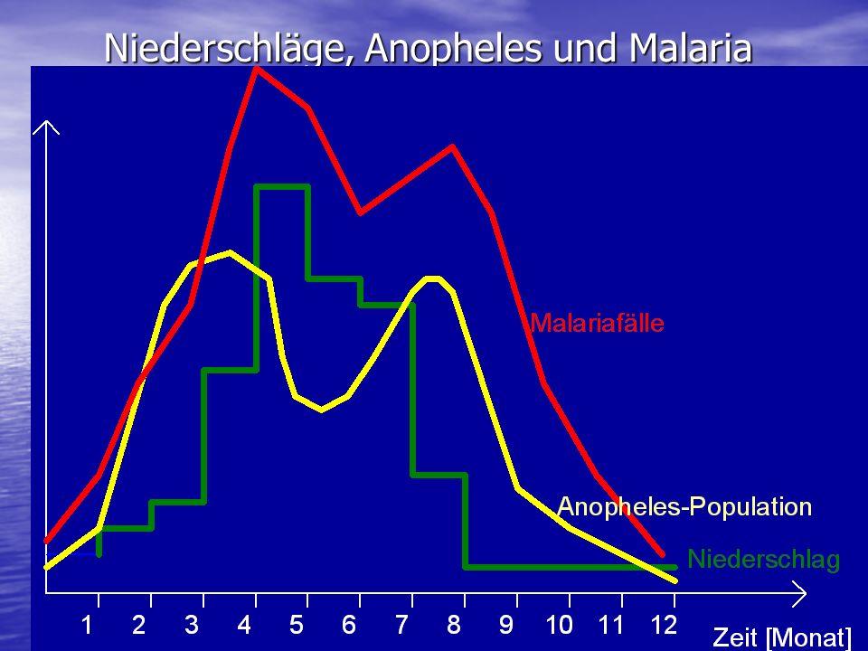 Niederschläge, Anopheles und Malaria