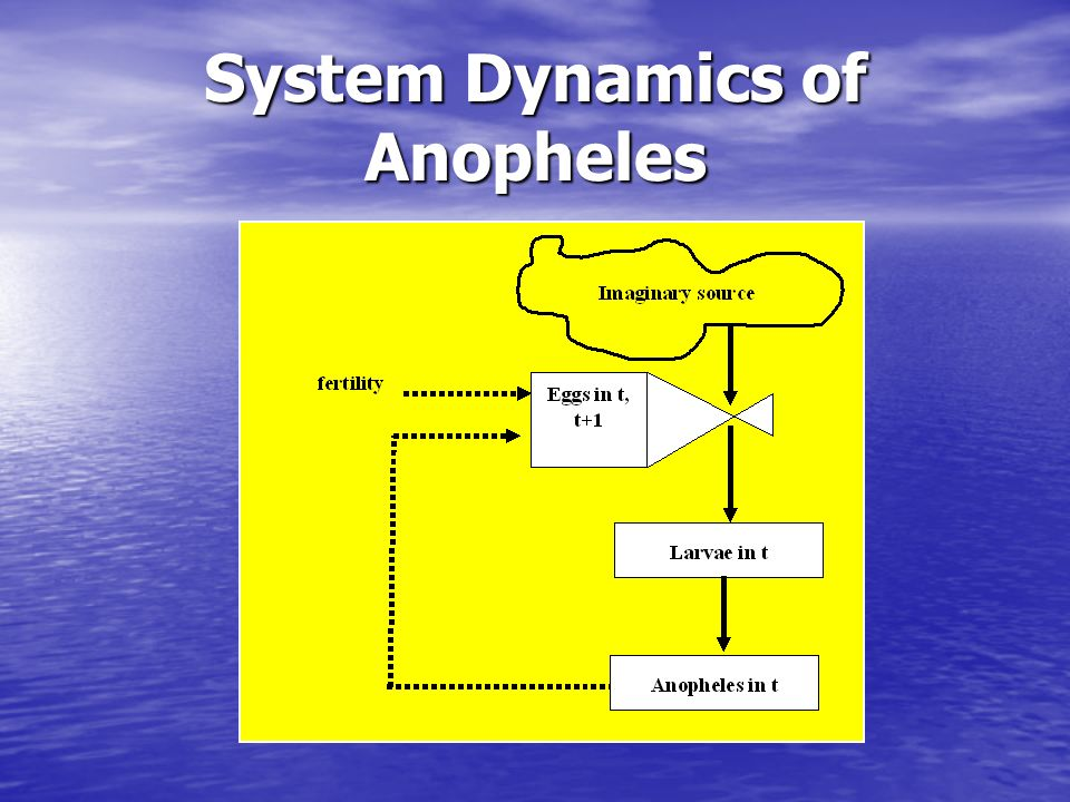 System Dynamics of Anopheles