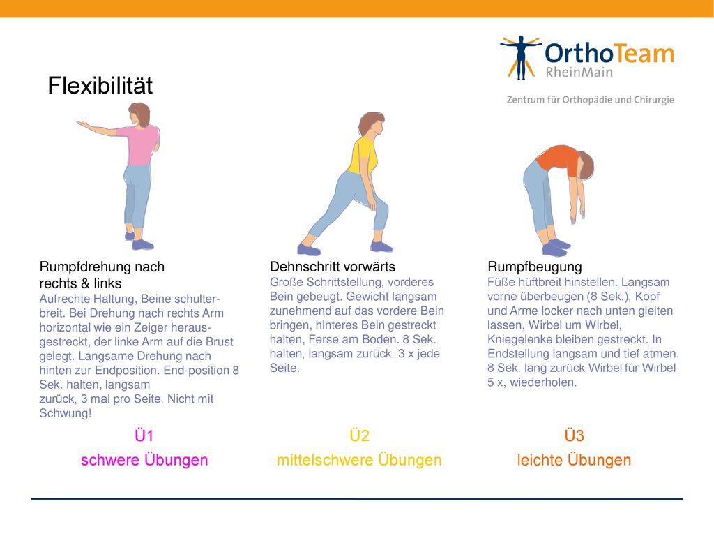 Fein Anatomie Zurück Und übungen Galerie - Anatomie Ideen - finotti.info