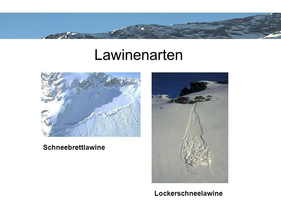 Lawinenarten Schneebrettlawine Lockerschneelawine
