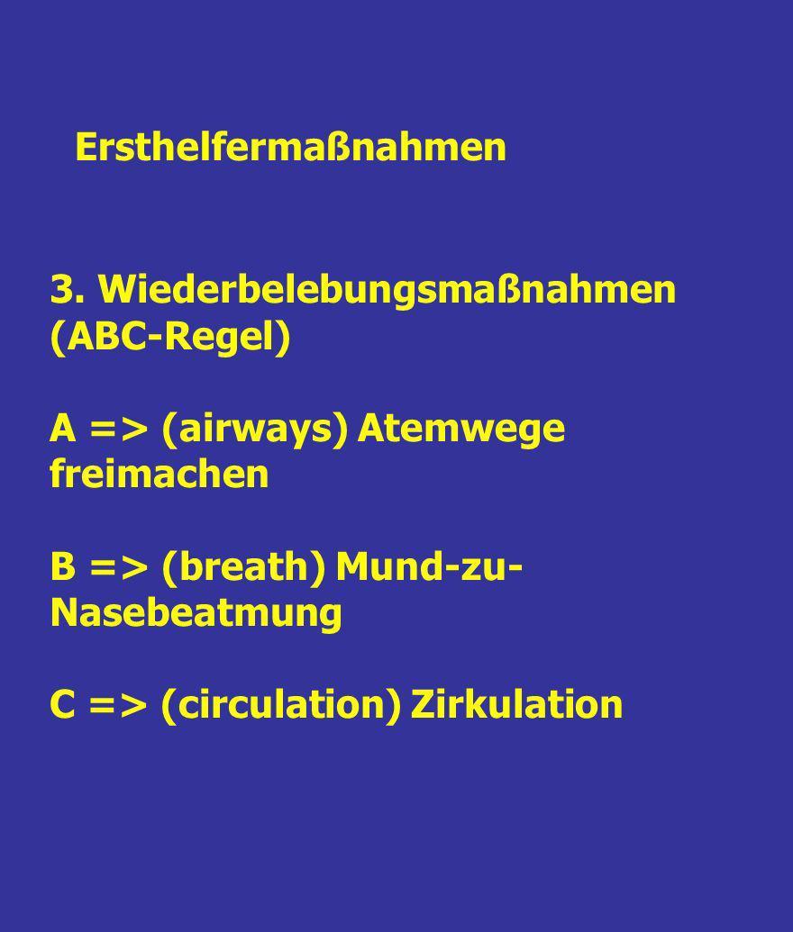 Ersthelfermaßnahmen 3. Wiederbelebungsmaßnahmen (ABC-Regel) A => (airways) Atemwege freimachen. B => (breath) Mund-zu-Nasebeatmung.