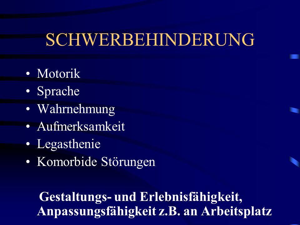 SCHWERBEHINDERUNG Motorik Sprache Wahrnehmung Aufmerksamkeit