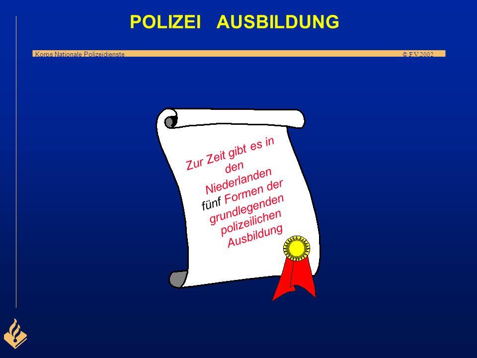 POLIZEI AUSBILDUNG Zur Zeit gibt es in den Niederlanden fünf Formen der grundlegenden polizeilichen Ausbildung.