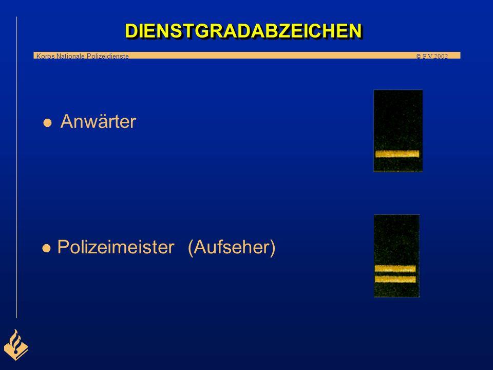 DIENSTGRADABZEICHEN Anwärter Polizeimeister (Aufseher)