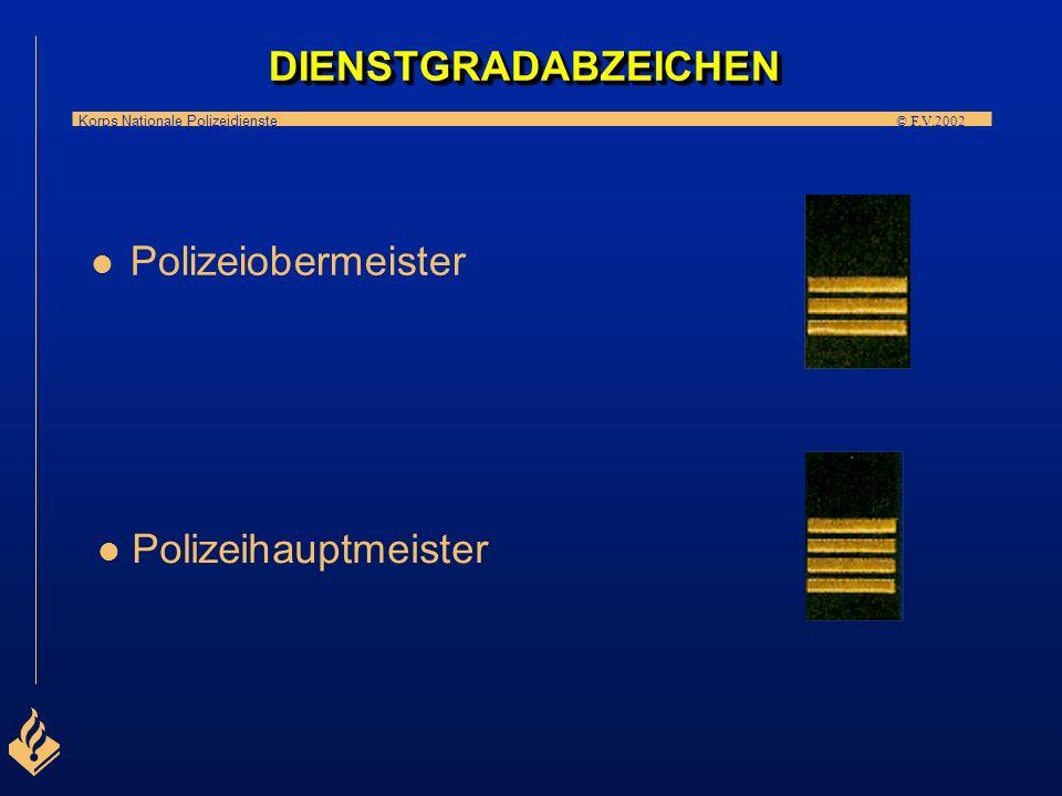 DIENSTGRADABZEICHEN Polizeiobermeister Polizeihauptmeister