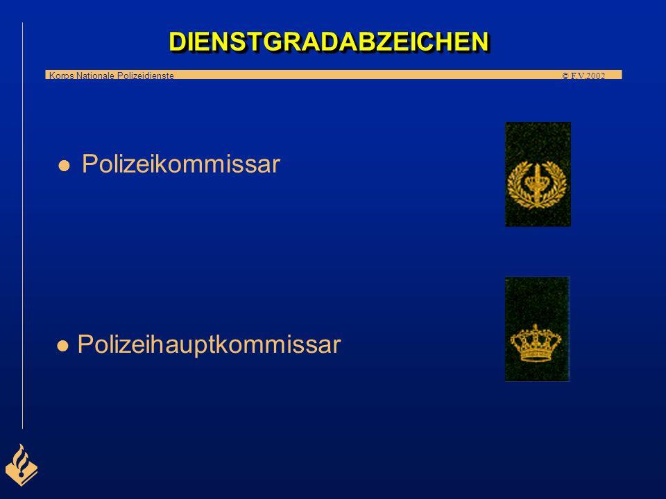 DIENSTGRADABZEICHEN Polizeikommissar Polizeihauptkommissar