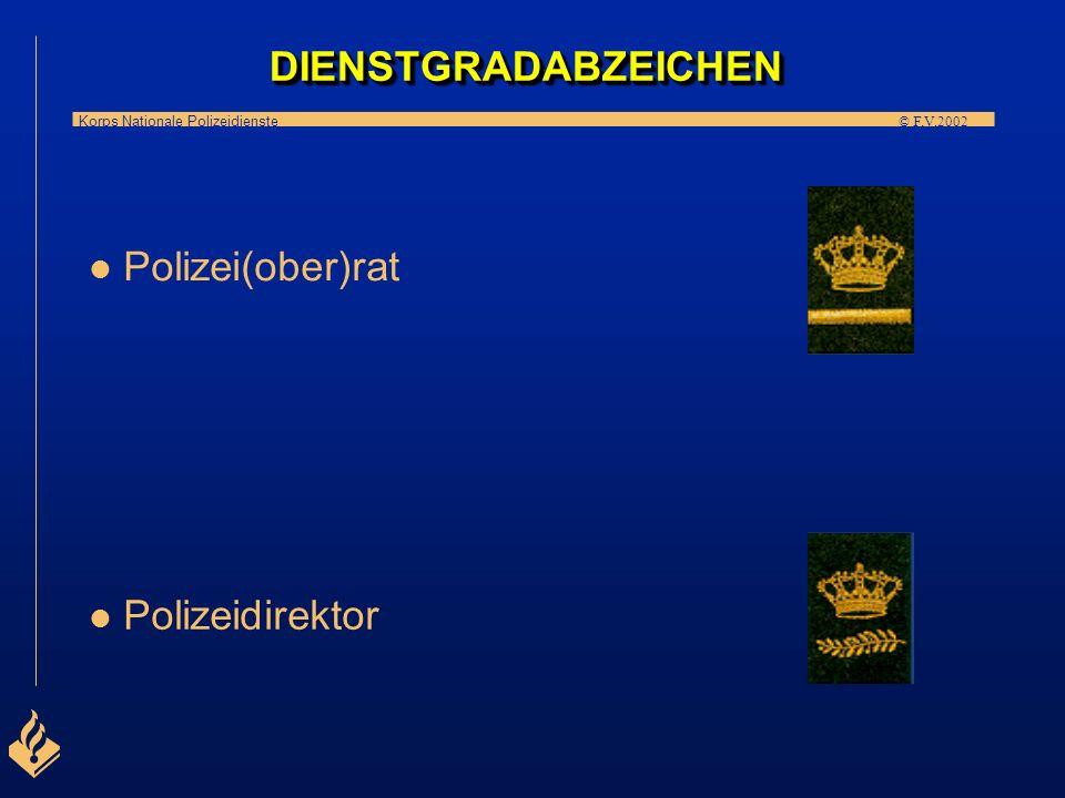 DIENSTGRADABZEICHEN Polizei(ober)rat Polizeidirektor