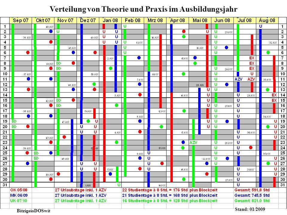 Verteilung von Theorie und Praxis im Ausbildungsjahr