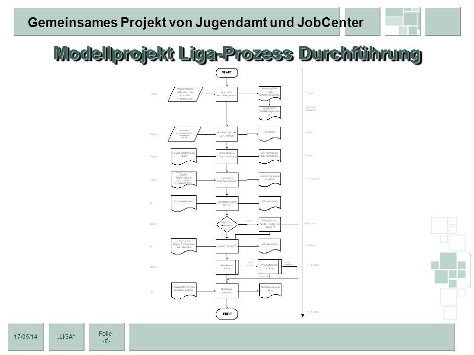 Modellprojekt Liga-Prozess Durchführung