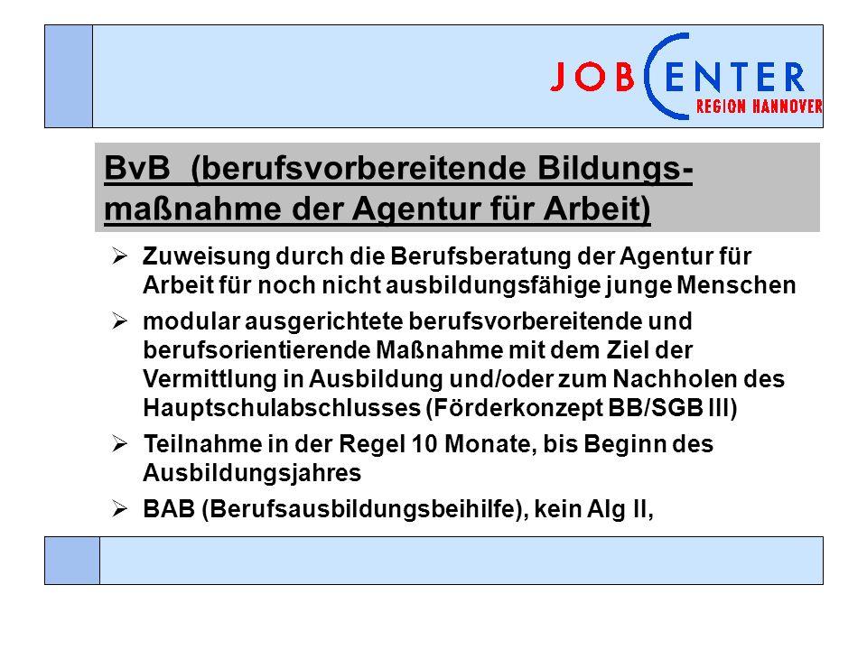 BvB (berufsvorbereitende Bildungs-maßnahme der Agentur für Arbeit)