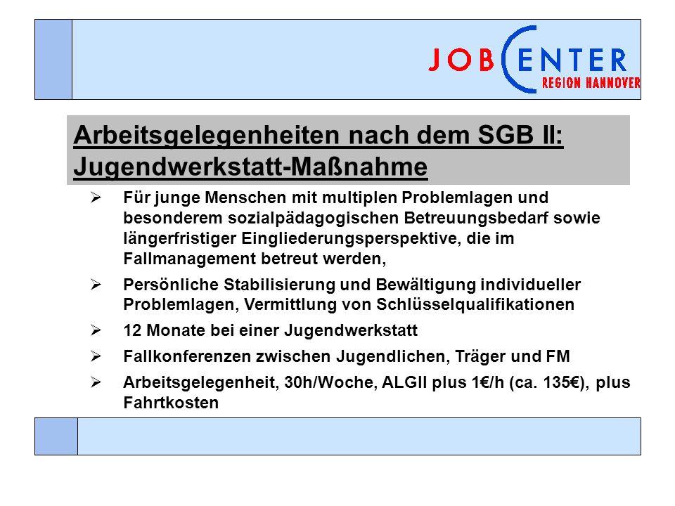 Arbeitsgelegenheiten nach dem SGB II: Jugendwerkstatt-Maßnahme