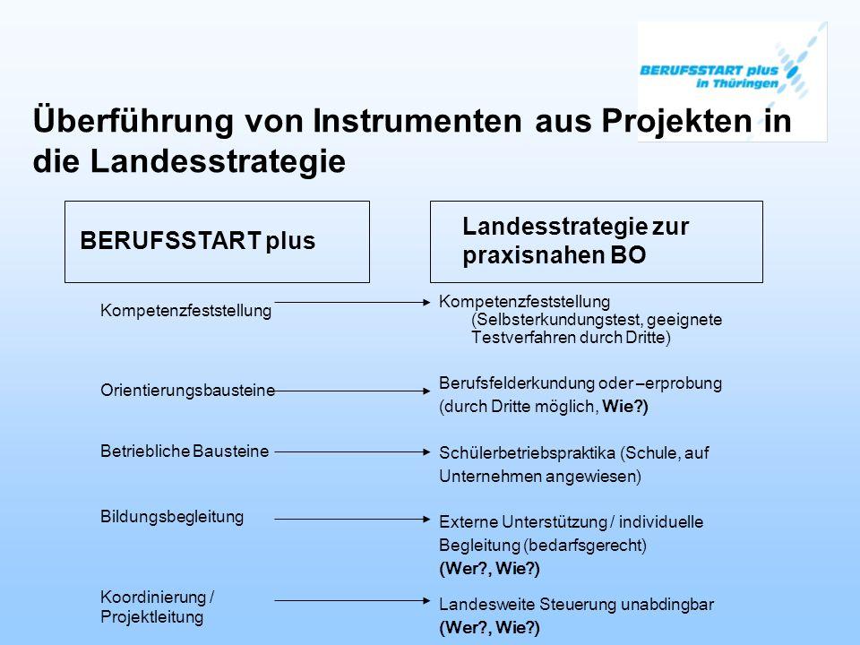 Überführung von Instrumenten aus Projekten in die Landesstrategie
