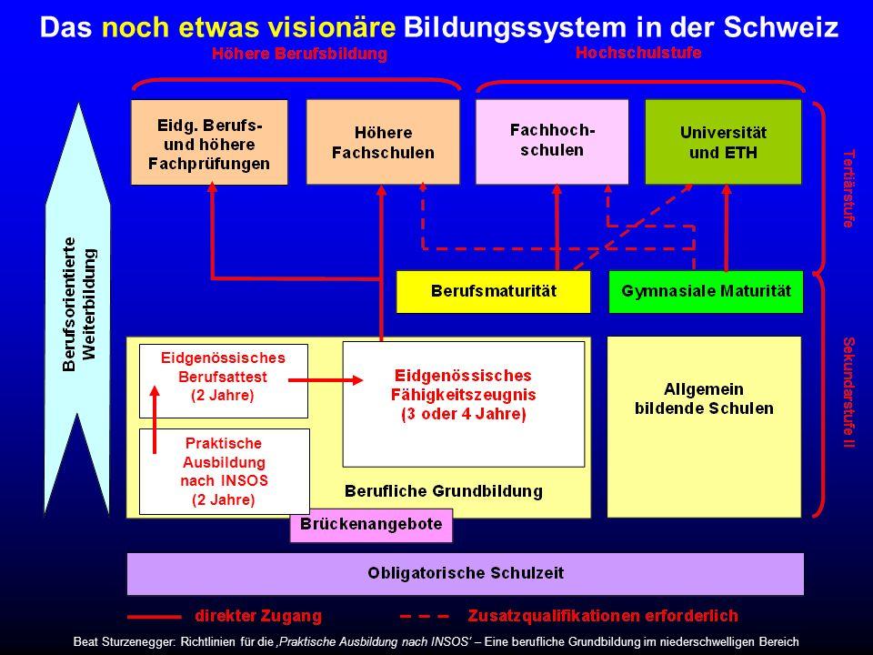 Das noch etwas visionäre Bildungssystem in der Schweiz