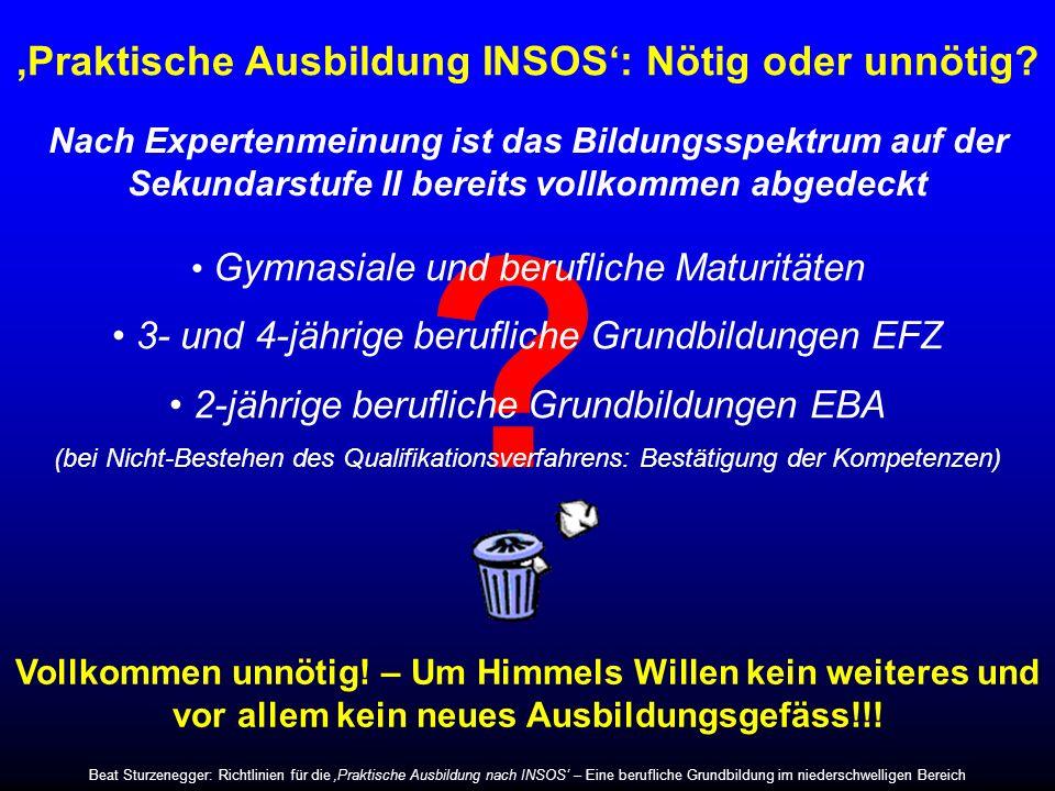 'Praktische Ausbildung INSOS': Nötig oder unnötig