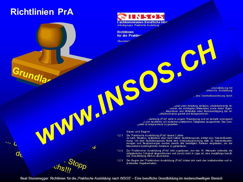 www.INSOS.CH Grundlage Richtlinien PrA ... Option für Lernschwächere