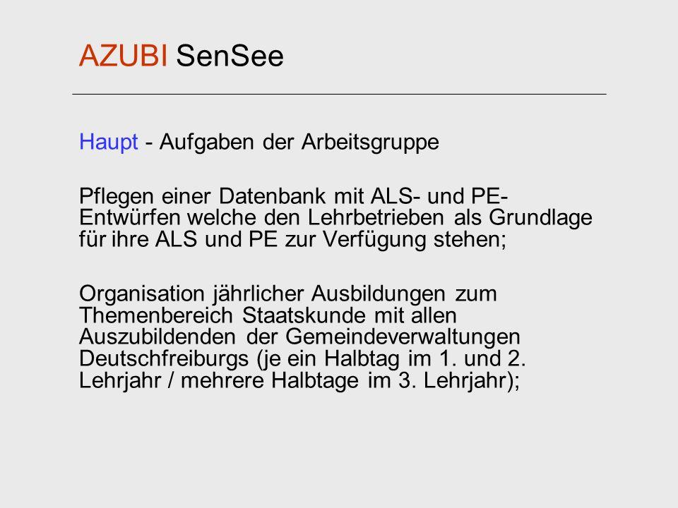 AZUBI SenSee Haupt - Aufgaben der Arbeitsgruppe