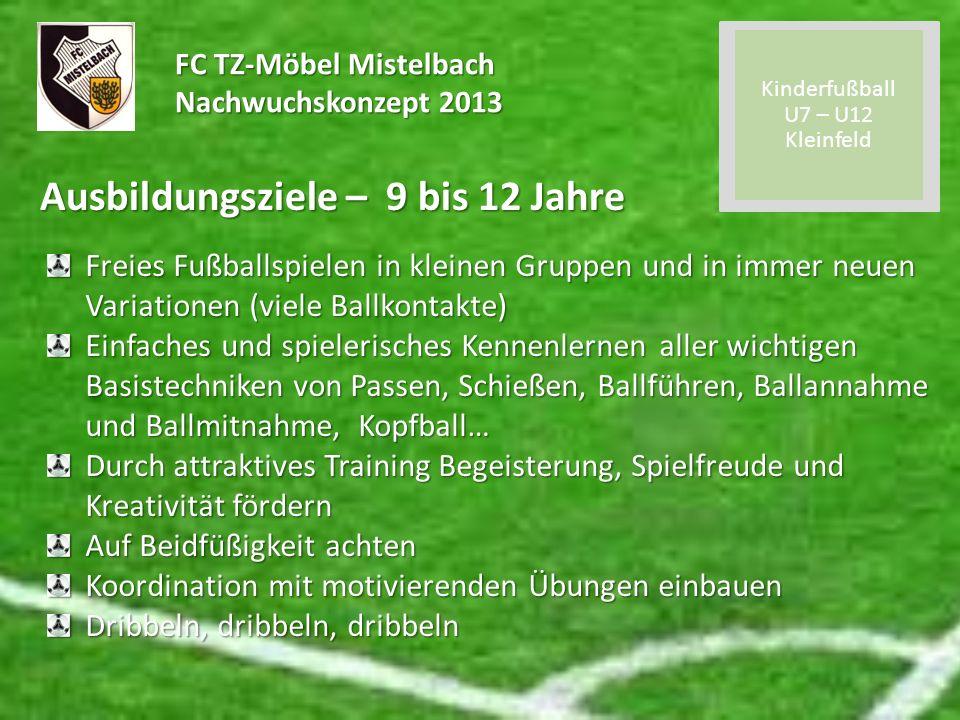 FC TZ-Möbel Mistelbach Nachwuchskonzept 2013