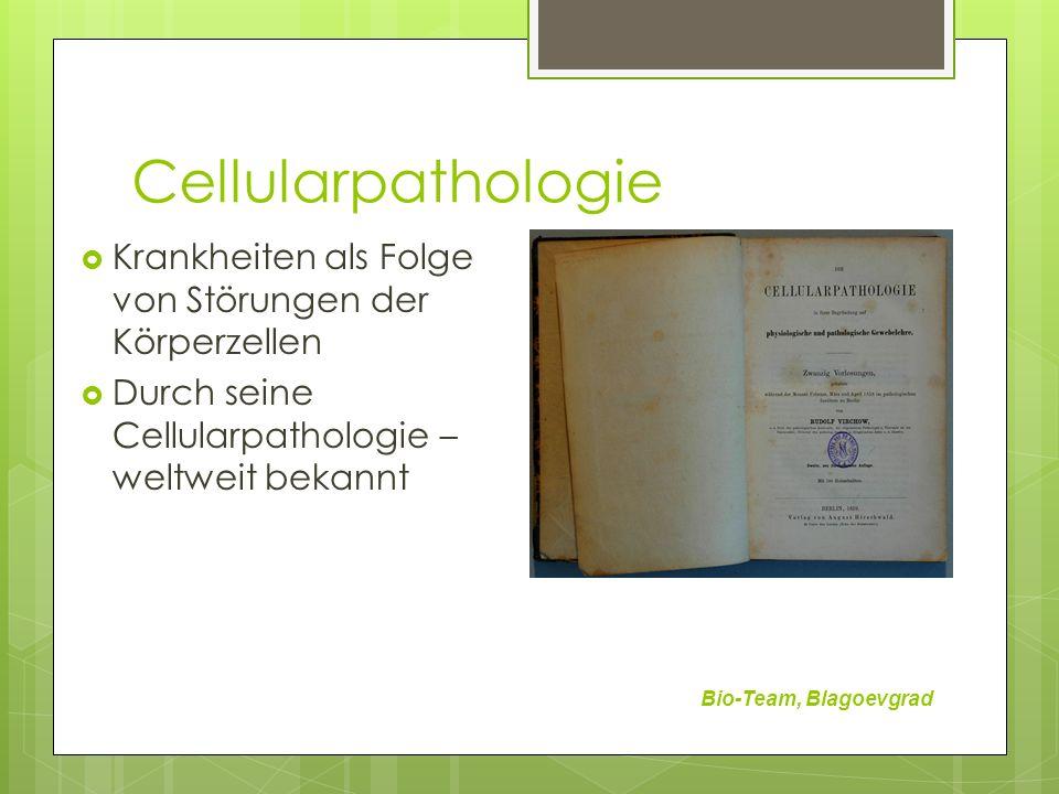 Cellularpathologie Krankheiten als Folge von Störungen der Körperzellen. Durch seine Cellularpathologie – weltweit bekannt.