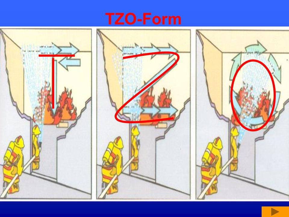 TZO-Form