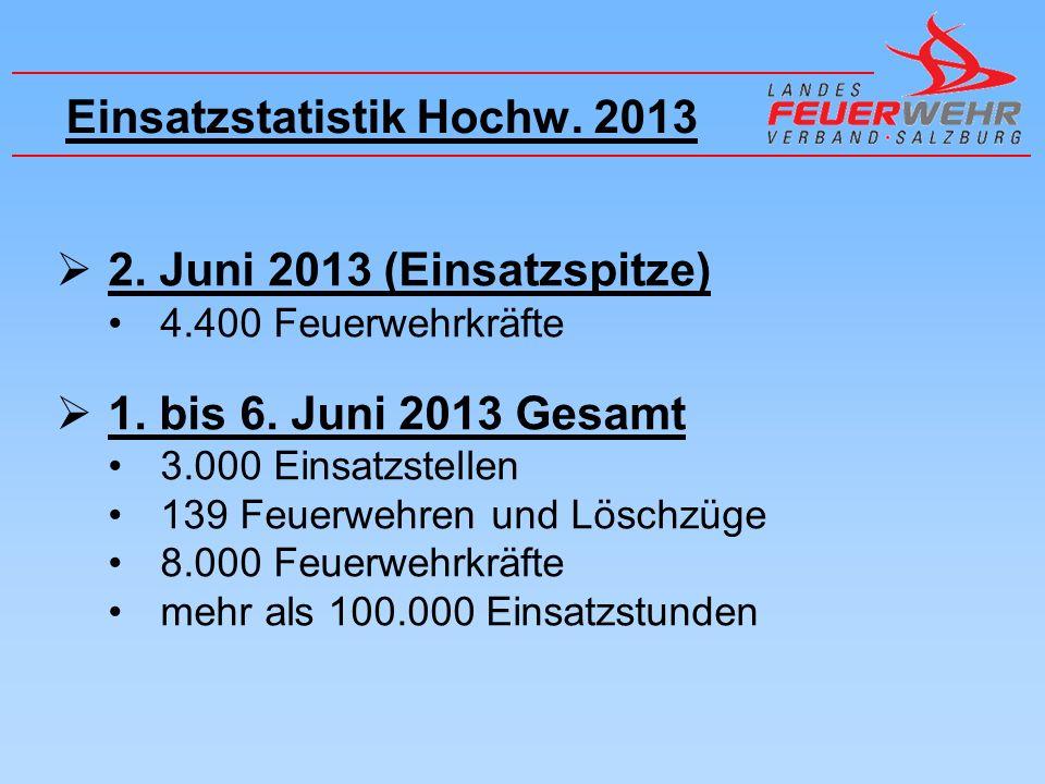 Einsatzstatistik Hochw. 2013