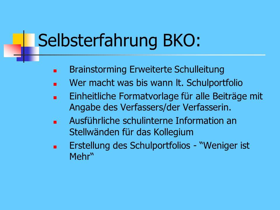 Selbsterfahrung BKO: Brainstorming Erweiterte Schulleitung