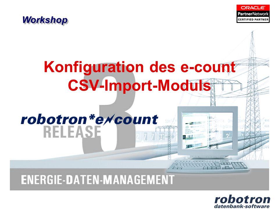 Konfiguration des e-count CSV-Import-Moduls