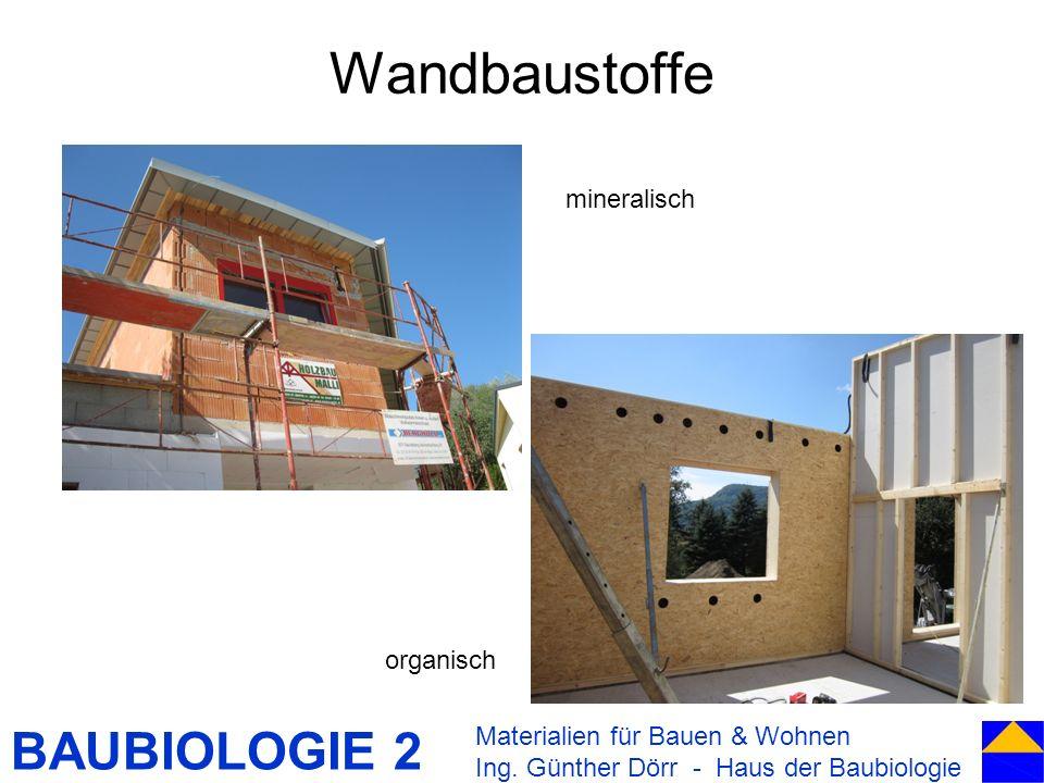 Wandbaustoffe mineralisch organisch Materialien für Bauen & Wohnen
