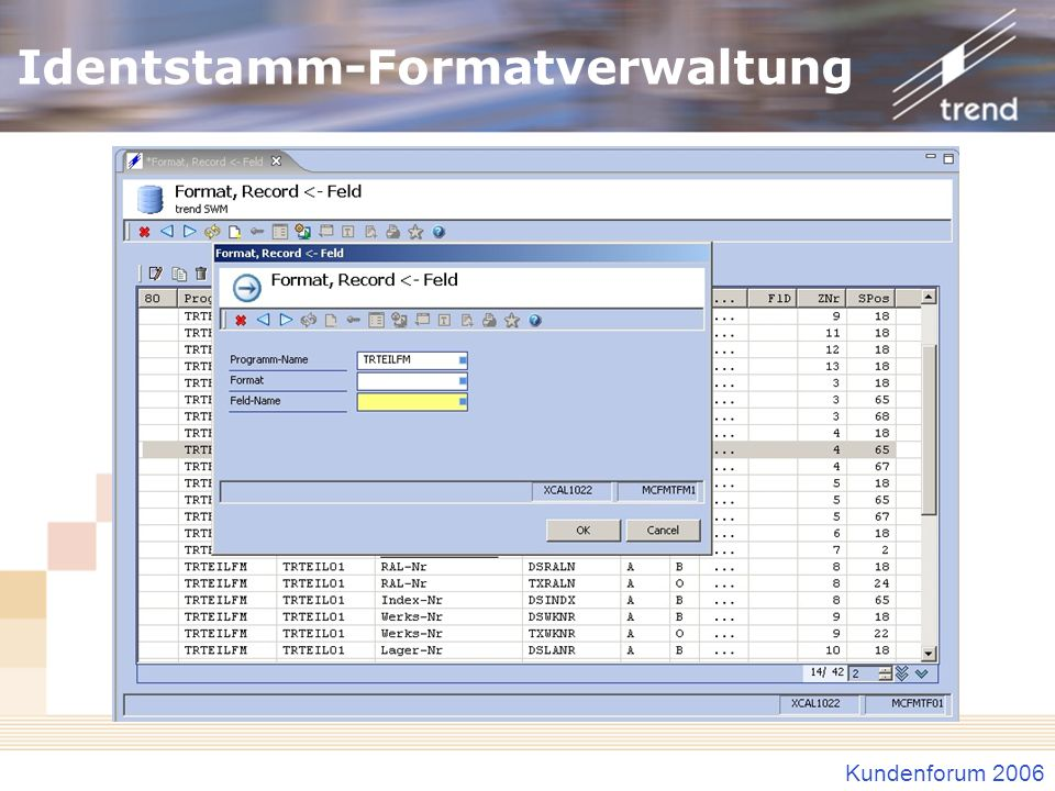 Identstamm-Formatverwaltung