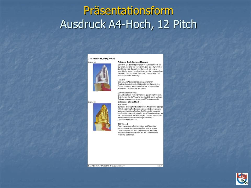 Präsentationsform Ausdruck A4-Hoch, 12 Pitch