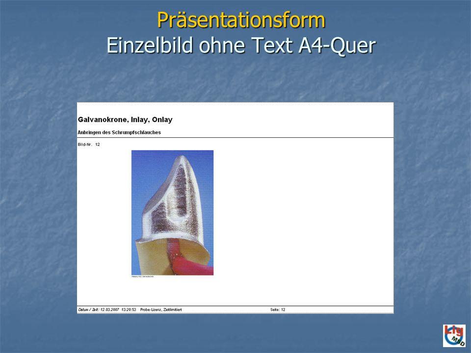 Präsentationsform Einzelbild ohne Text A4-Quer