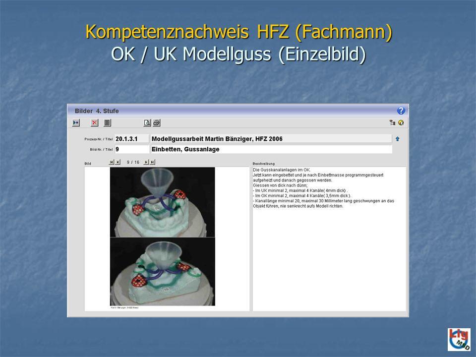 Kompetenznachweis HFZ (Fachmann) OK / UK Modellguss (Einzelbild)