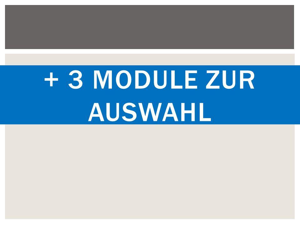 + 3 Module zur Auswahl