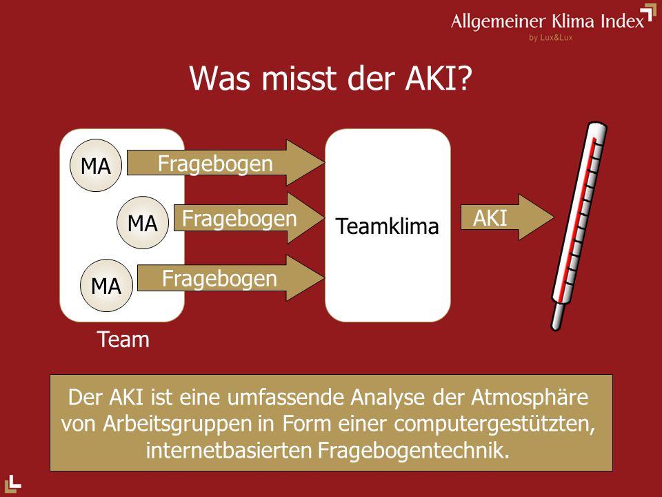 Was misst der AKI MA Fragebogen Teamklima AKI MA MA Team
